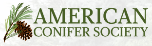 American Conifer Society