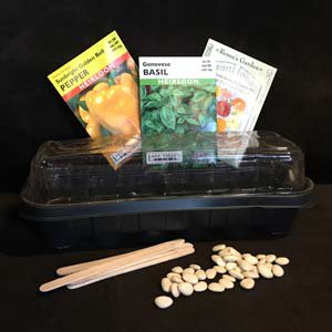 sprouting-seeds2.jpg